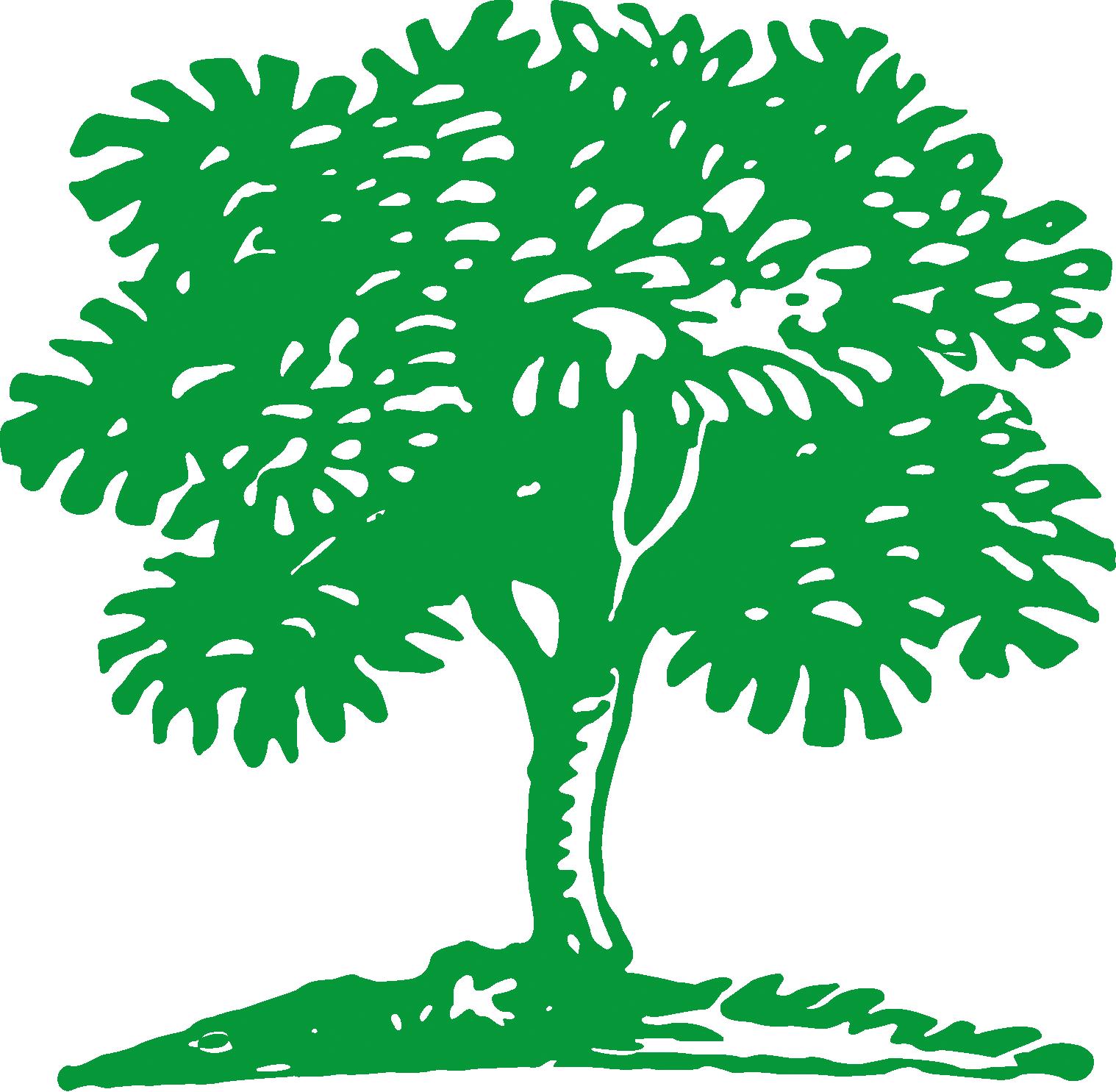 over termaat groenvoorziening termaat groenvoorziening